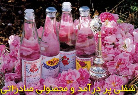 Damaskrose (3)